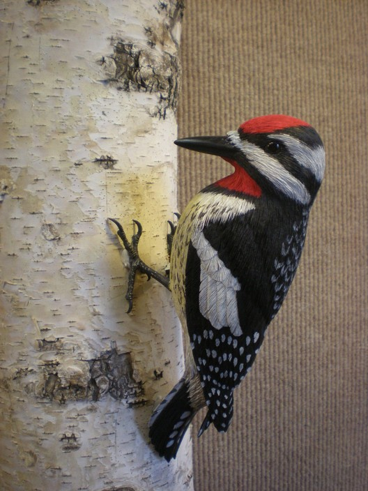 Bird Carvings Brad Wil...