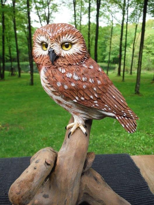 Owls carvings